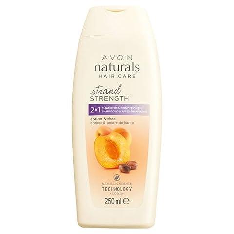 Avon 2-in-1-Naturals Shampoo und Conditioner, Golden Apricot und Shea 250ml