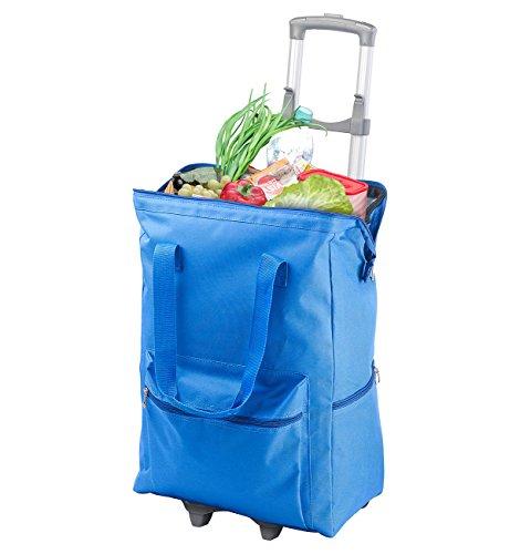 PEARL Einkaufstrolley: 2in1-XXL-Einkaufs-Trolley mit Abnehmbarer Kühltasche, 55 Liter (Einkaufstrolleys) -