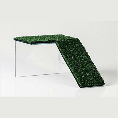 HappyZooMascotas Rampa Plataforma De Cristal para Tortuga - Tamaño Pequeño - 13x10x20 cm