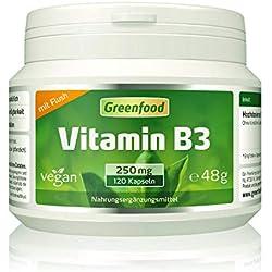 Greenfood Vitamin B3 Niacin (mit Flush-Effekt), 250 mg, extra hochdosiert, 120 Vegi-Kapseln, vegan – wichtig für die Serotonin-Produktion (Glückshormon) und die Durchblutung. OHNE künstliche Zusätze.