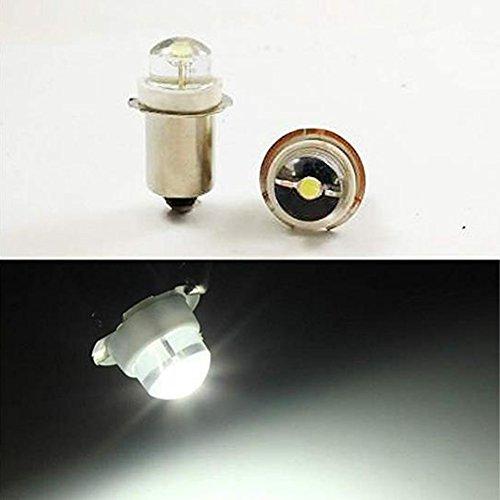 P13.5S 3V 4.5V 6V 0.5W 0.75W 6000K blanco LED Bombilla Linterna Faro Mini Linterna de Cabeza, 4 unidades, 6 V