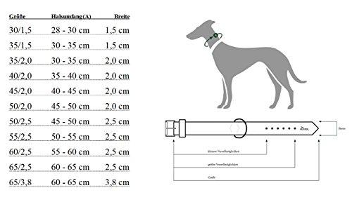 HUNTER NEOPREN VARIO PLUS Halsung, Hundehalsband, Nylon, mit Neopren gepolstert, 40/2,0 (S-M), braun/karamell