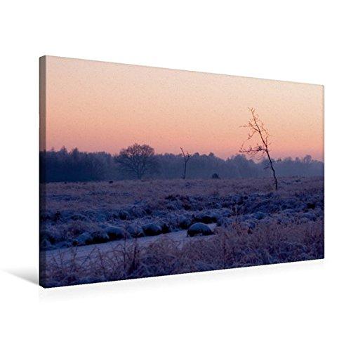 Premium Textil-Leinwand 75 cm x 50 cm quer, Hochmoor am kalten Winterabend   Wandbild, Bild auf Keilrahmen, Fertigbild auf echter Leinwand, Leinwanddruck: Emsdettener Venn (CALVENDO Natur)