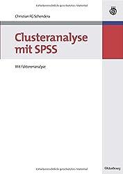Clusteranalyse mit SPSS: Mit Faktorenanalyse