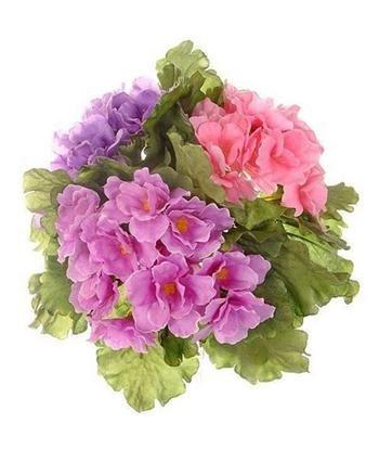 floralsilk-limited-african-violet-bush-assorted