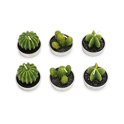 Cactus Candles,ZZM Velas decorativas de caramelo, 6 unidades, hechas a mano, delicadas cactus, velas de té, sin humo, plantas artificiales verdes, suculentas, velas para cumpleaños, bodas, fiestas