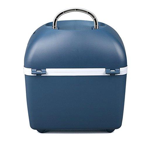 LJ Mini Réfrigérateur - Réfrigérateur compact 20L pouvant contenir 24 canettes de 330 ml |