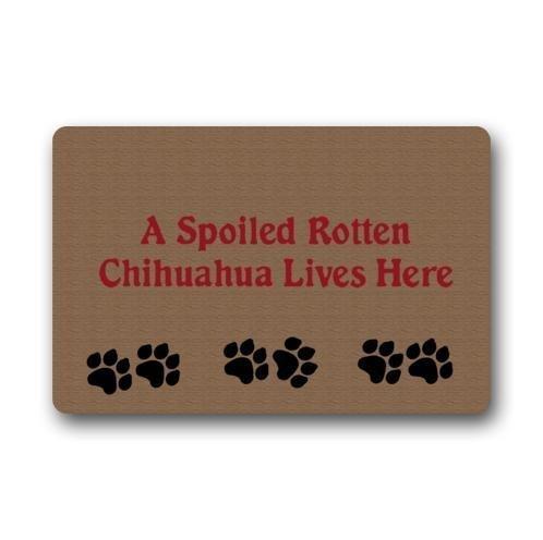 KLing EIN verdorbener fauler Chihuahua lebt Hier Fußmatte/Willkommens-Matte für Hauptdekoration Badezimmer Willkommens-Matten Bodenmatte-Teppich-Teppiche Innen/im Freien 16 x 24,40cm x 60cm