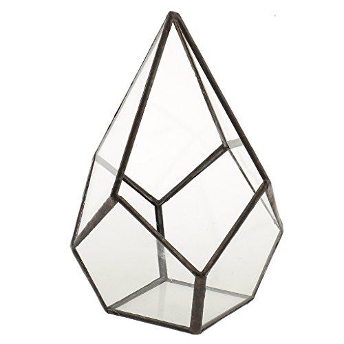 MagiDeal Glasterrarium Cube Fairy Gartenhaus Gewaechshaus - Farbe1, 12x12x17cm