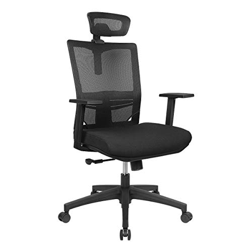 HomyLink Home Office Chair Ergonomic Comfortable Mesh High Back with Adjustable Headrest Armrest Seat Height Tilt Tension Lumbar Support Spine Protection