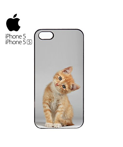 Cute Cat Looking At You Kawaii Yellow Cats Animal Mobile Phone Case Cover iPhone 6 Plus + Black Blanc