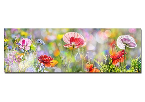BILDERFABRIK – Wand-Bild Wiese mit Blumen als Kunstdruck auf Leinwand und Holzkeilrahmen
