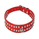 Unbekannt wfz17Strass Hunde Katze Haustier Halsband für Welpen, strapazierfähig, Kunstleder-Halskette für kleine Hunde