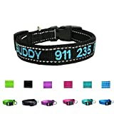 Custom Personalized Dog ID Collars Embroidered Pet Name Phone Collars 4 Adjustable Sizes: x Small,Small, Medium, Large Nylon Collars for Dogs