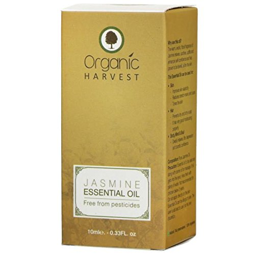 Récolte Bio huile essentielle de jasmin 100% Pure Fragrance fraîche et naturelle 10ml d'huile