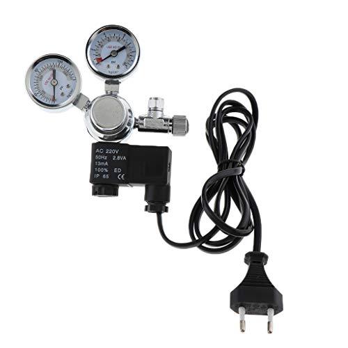 Homyl Dual Gauge CO2 Druckminderer Regulator mit Blasenzähler für Aquarium - Typ 2 -