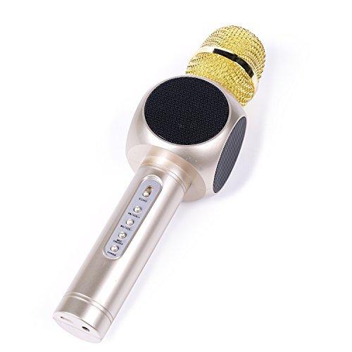 LEMEGO Wireless Microphone Bluetooth Karaoke