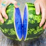 Shopmeeko 2016 heißer Verkauf Wassermelone bonsai 50 stücke Obst Gemüse bonsai Garten Home Plant Blau Gelb Grün Wassermelone Kostenloser Versand: Klar