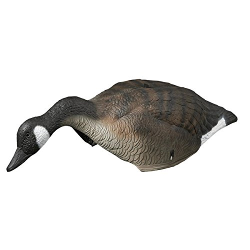 leurre-leurre-canada-goose-shell-w-tte
