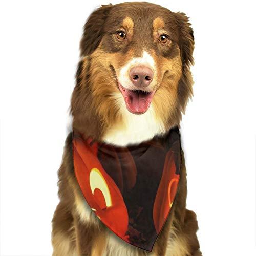 Hunde Für Schweinchen Kostüm - Sitear Halstuch-Set für Halloween, Kürbiss, Lichter, Schweinchen, für Hunde und Katzen, geeignet für kleine bis große Hunde