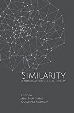 Similarities – A Paradigm for Culture Theory