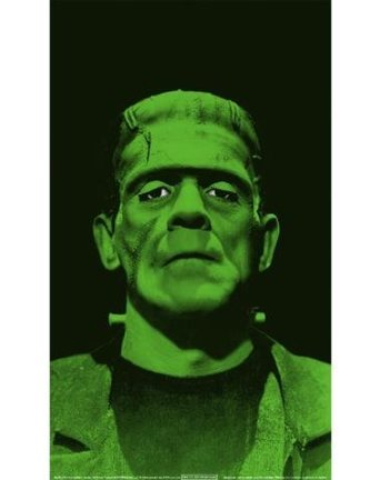 Tomorrow sunny 24X36 INCH / ART SILK POSTER / WOWindow Posters Frankenstein's Monster Scary Halloween Window Decoration Print Print by Tomorrow sunny (Wowindows Halloween Poster)