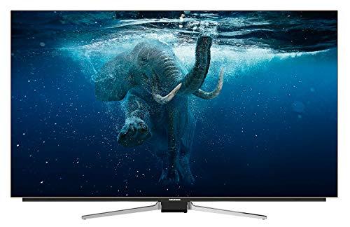 Grundig 65 GOB 9990 FINE ARTS OLED 164 cm (65 Zoll) Fernseher (Ultra HD, Triple Tuner, Smart TV)