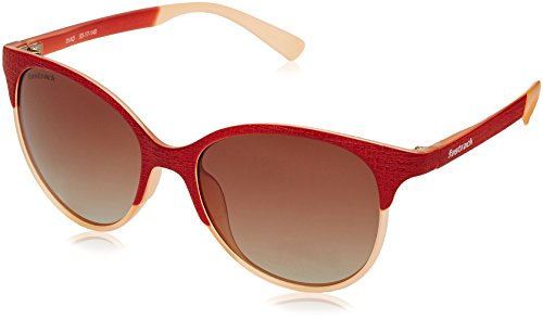 Fastrack UV Protected Browline/Clubmaster Women's Sunglasses - (P335BR1F|50|Graduated Brown Color) image