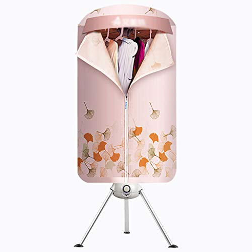 LIXYFHGJ Los secadores Aire eléctricos Visten secador