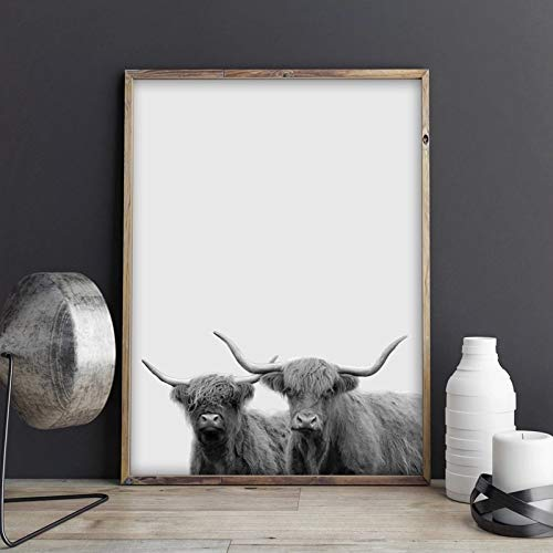 muzi928 Modern Animal Photography Canvas Painting Highland Cattle Print Poster Picture Home Wall Art Decoration Can Be Customized40x50 cm No Frame
