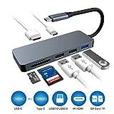 Raycue Hub USB C Adattatore 7Porte con HDMI 4K, 3 Porte USB, Lettore Schede SD/TF Hub Tipo C per dell XPS Huawei PC Windows Computer Plug And Play