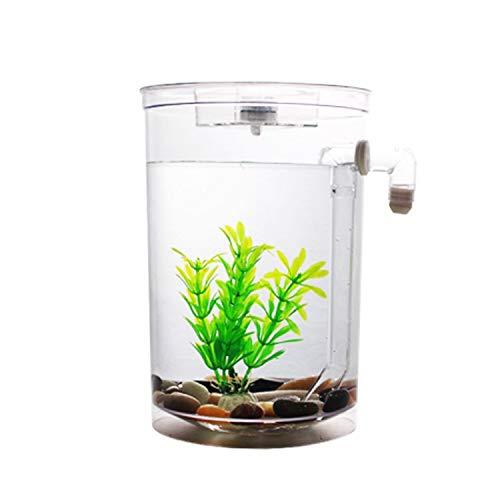 Bayrick auto pulizia acquario mini Fun Fish Tank kit + luce LED Gravity Clean