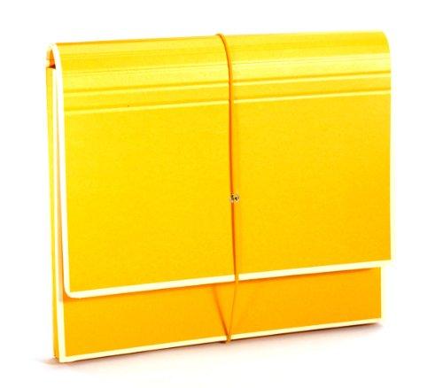 Semikolon (351977) Akkordeon mit Gummiverschluss sun (gelb)   Sammelmappe/Fächer-Mappe für A4 und US Letter Size   Format: 32,0 x 27,5 cm