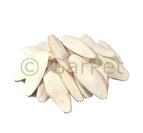 1000gr 1KG 12-20 cm Sepiaschale Sepiaschalen Sepia Futterkalk Calcium Kalzium 1 Sepia Schale