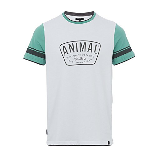 Animal T-shirts - Animal Hoops T-Shirt - Light Grey Marl beryl green