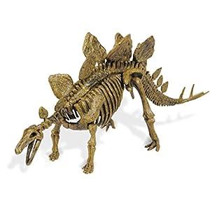 Cazadores Dr. Steve CL1504K - Paleo Expedición Kit Dino Dig: Modelo Stegosaurus