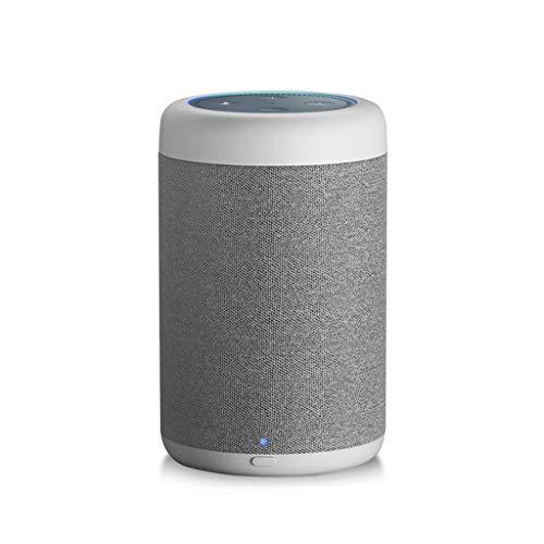 ZJHNZS Bluetooth Lautsprecher GGMM D6 Tragbarer Lautsprecher für Amazon Echo Dot, 2. Generation, 20 W, leistungsstark für Alexa Speaker, 5200 mAh-Akku (Punkt separat erhältlich), Weiß