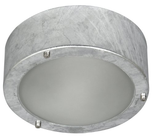 ranex-cork-5000314-60-watt-indoor-outdoor-galvanised-steel-ceiling-wall-light