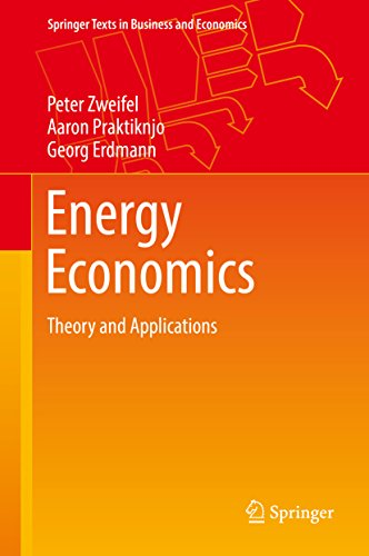 Energy Economics: Theory and Applications (Springer Texts in Business and Economics) (English Edition)
