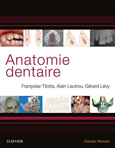 Anatomie dentaire par Françoise Tilotta
