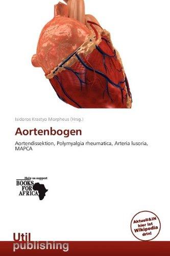 Aortenbogen: Mehr als 20 Angebote, Fotos, Preise ✓