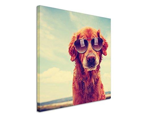 Leinwandbilder quadratisch 60x60cm Tierbilder - Cooler Golden Retriever mit Sonnenbrille