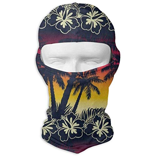Hoklcvd Balaclava Tropical Summer Pineapple Full Face Masks Ski Motorcycle Neck Hood Design15 (Indischen Im Mantel Winter)
