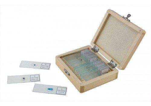 celestron-juego-de-25-portaobjetos-para-microscopio-25-x-76-mm