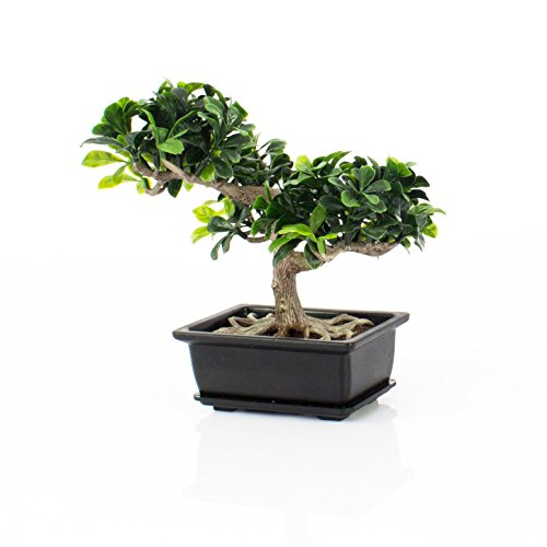 artplants – Künstlicher Buchs Bonsai in Dekoschale, 20 cm – Kunst Bonsai/Deko Zimmerbonsai