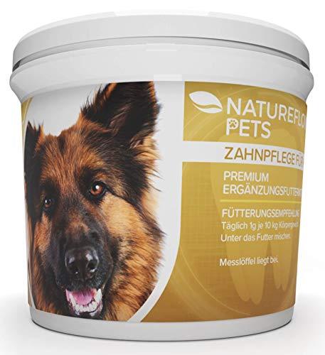 e - Zahnsteinentferner Ergänzung gegen Mundgeruch bei Hunden - Natürliche und Wirksame Reinigung für Zähne & Zahnfleisch - Pulver 100g Premium Ergänzungsfuttermittel ()