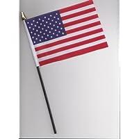 United States of America USA Hand Flag 25cm