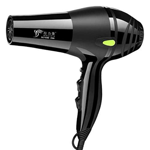 Secador cabello Secador cabello iónico Negativo profesional