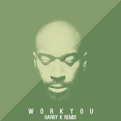 Work You - Harry K Remix -