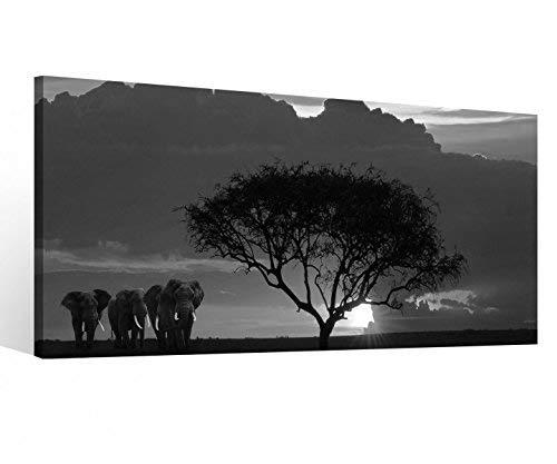 Foto en Lienzo 1 Piezas África Sabana Elefantes Safari Árbol Negro Blanco...